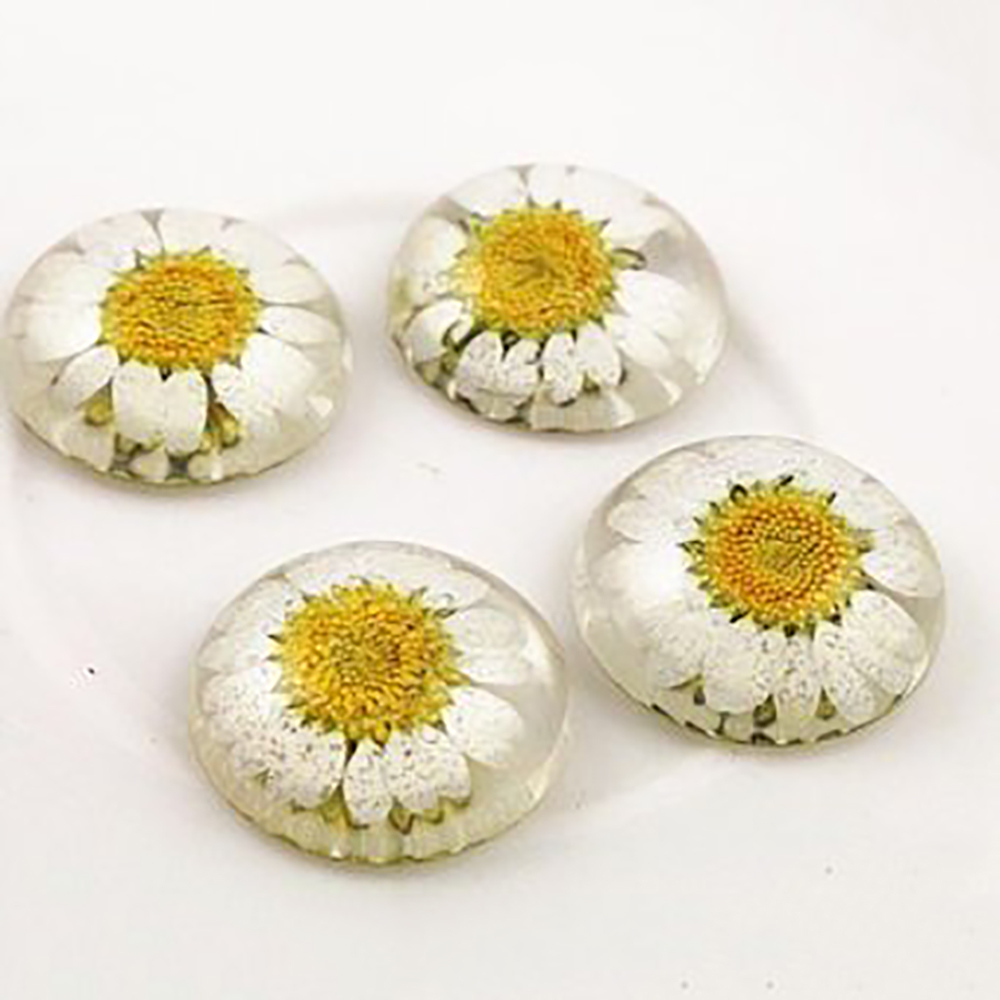 New Fashion 5pcs 25mm Natural Dried Flowers Flat Back Resin Cabochons Cameo  G3-17