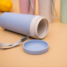 Portable Creative Wheat Straw Water Bottle Double-layer  Double Cup Plastic Insulation