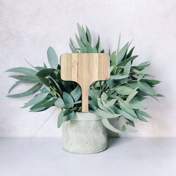 50Pcs Bamboo Plant Labels   Eco-Friendly T-Type Wooden Plant Sign Tags Garden Markers for Seed Potted Herbs Flowers Vegetables ( title=