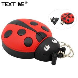 Image 1 - TEXT ME cartoon creative Beetle model usb 2.0 4GB 8GB 16GB 32GB 64GB pen drive USB Flash Drive  gifty Stick Pendrive