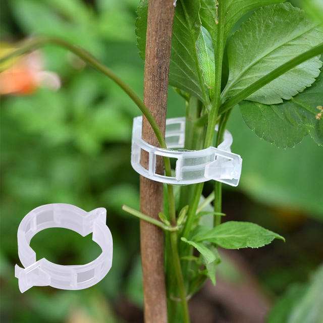 50/100pcs Reusable Plastic Plant Support Clips Plants Hanging Vine Clip Garden Greenhouse Fork Vegetable Tomatoes Clips Supplies 1