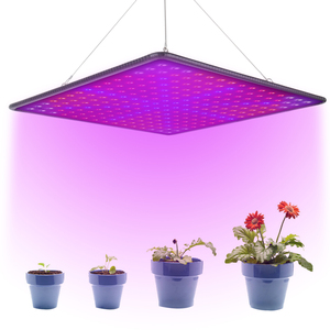 1000W Full Spectrum Indoor 225 LEDs Grow Lamp Plant Growing Light Tent Fitolampy Phyto For Plants Flowers Seedling Cultivation