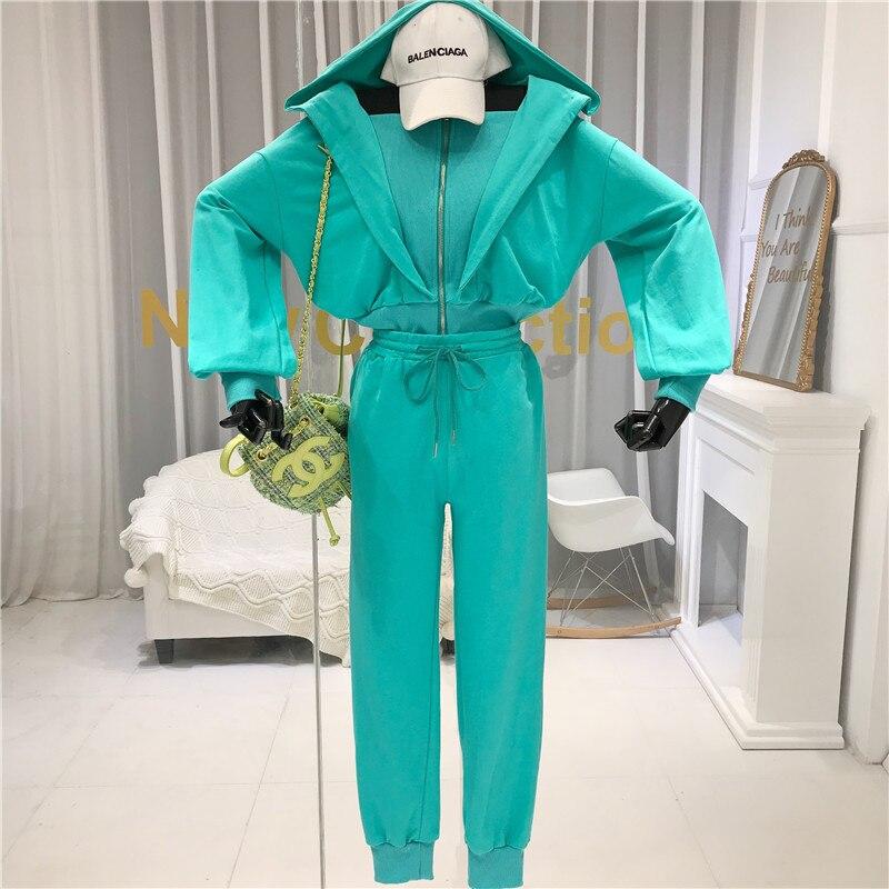 2020 Spring New Two Piece Set Women Sports Suit Casual Zipper Hooded Sweatshirt Cardigan + Casual Loose Pants TZ32