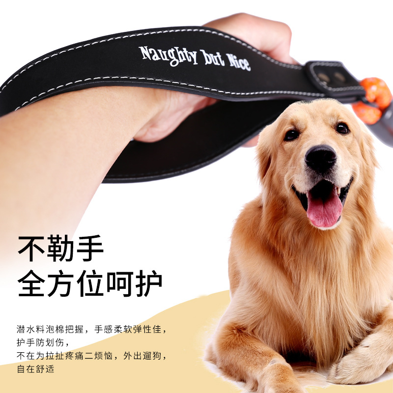 LOVE Dog Fan Guang Sheng Dog Rope Color Traction Pet Supplies Fan Guang Sheng Universal Canine Unscalable Small