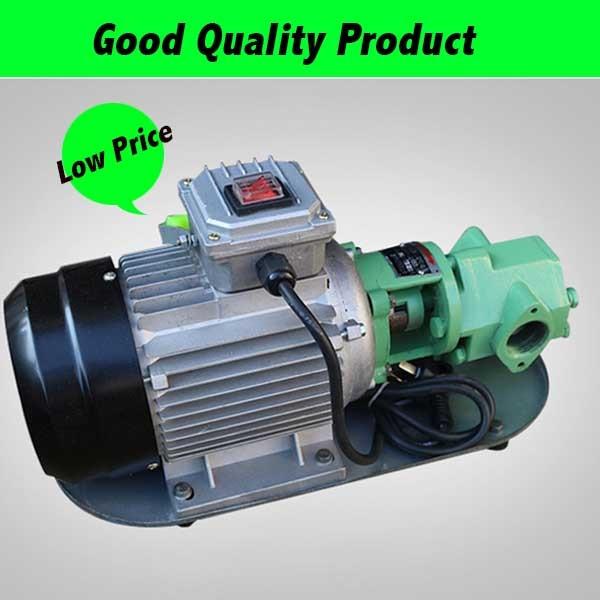 WCB-30 Fuel Transfer Pump 30L/Min Small Portable Horizontal Gear Oil