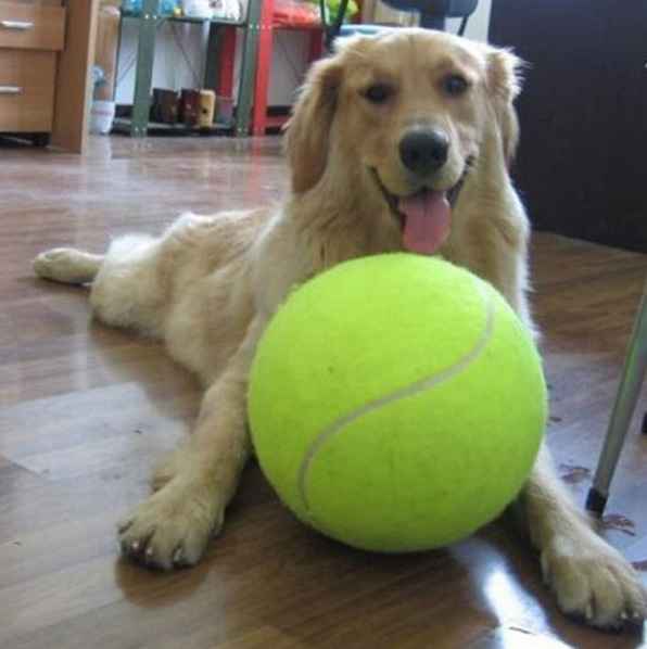 9.5 Inches Giant Pet Toy Tennis Ball Dog Tennis Ball Dog Chew Toy Inflatable Outdoor Tennis Ball Kids Toy Pet Dog Training Ball