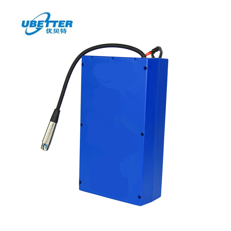 1000W Deep Cycle Electric Bike 20ah 48v Lithium Ion Battery With BMS