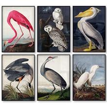 Vintage Impresión de lienzo Audubon carteles de aves rosa Flamingo Snowy Owl Pelican garza azul blanco Egret pintura de la lona arte de la pared