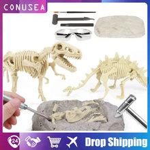 Diy обучающие игрушки моделирование динозавр окаменелости археологический