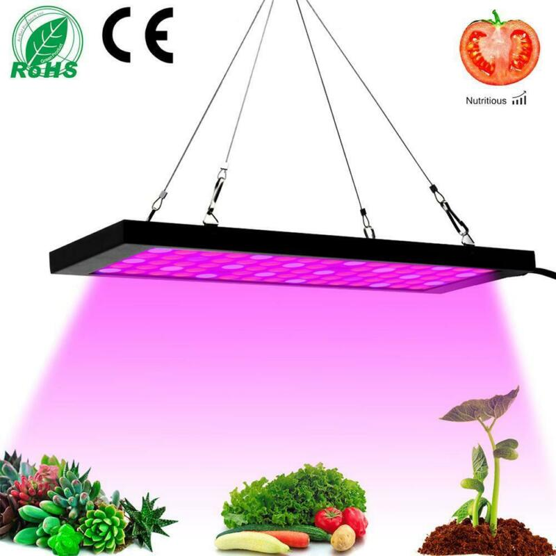 New Arrival ECO 600W LED Grow Light Full Spectrum Hydroponic Greenhouse Veg Bloom Indoor Plant Lamp IR US UK EU Plug