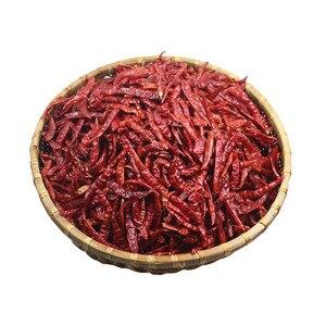 Image 5 - Spedizione gratuita 200g peperoncino secco rosso puro pianta naturale Bonsai Sichun peperoncino