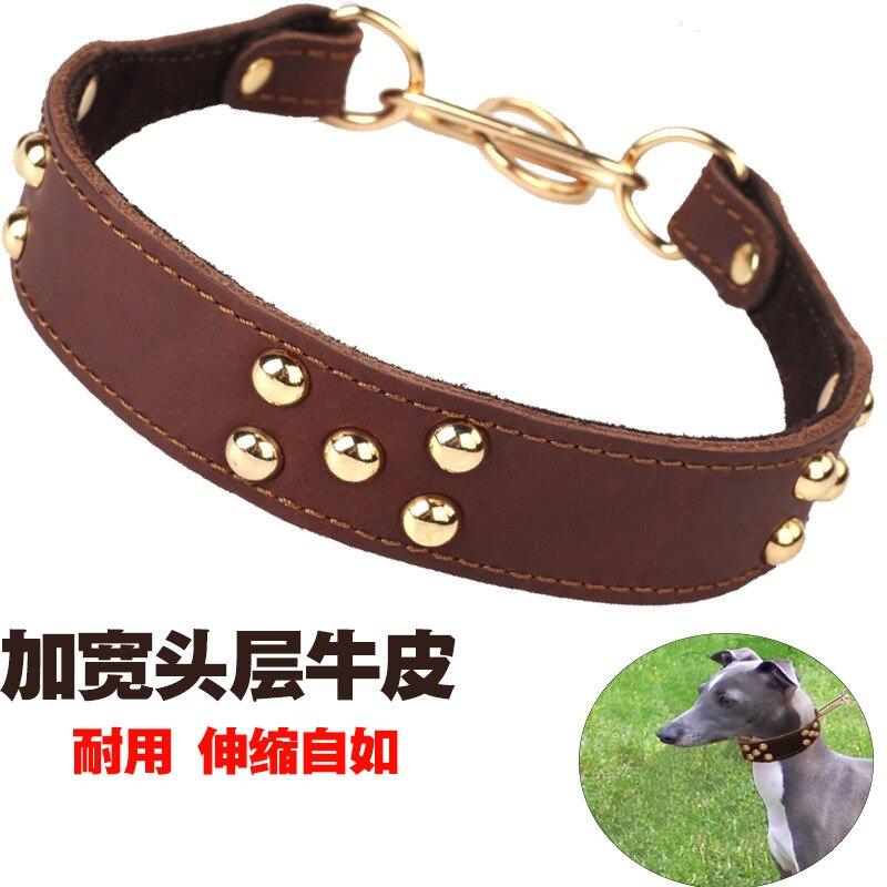 Dog Collar Cowhide Mushroom Nail Collar Greyhound Bandana Gree Whippets Dog Collar Freely Adjust A Taut Collar