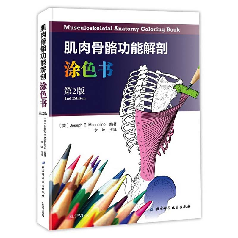 Musculoskeletal Anatomy Coloring Book Bilingual (Chinese And English) Version 2nd Edition By Joseph E. Muscolino