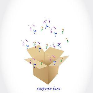 Image 1 - Surprise Box