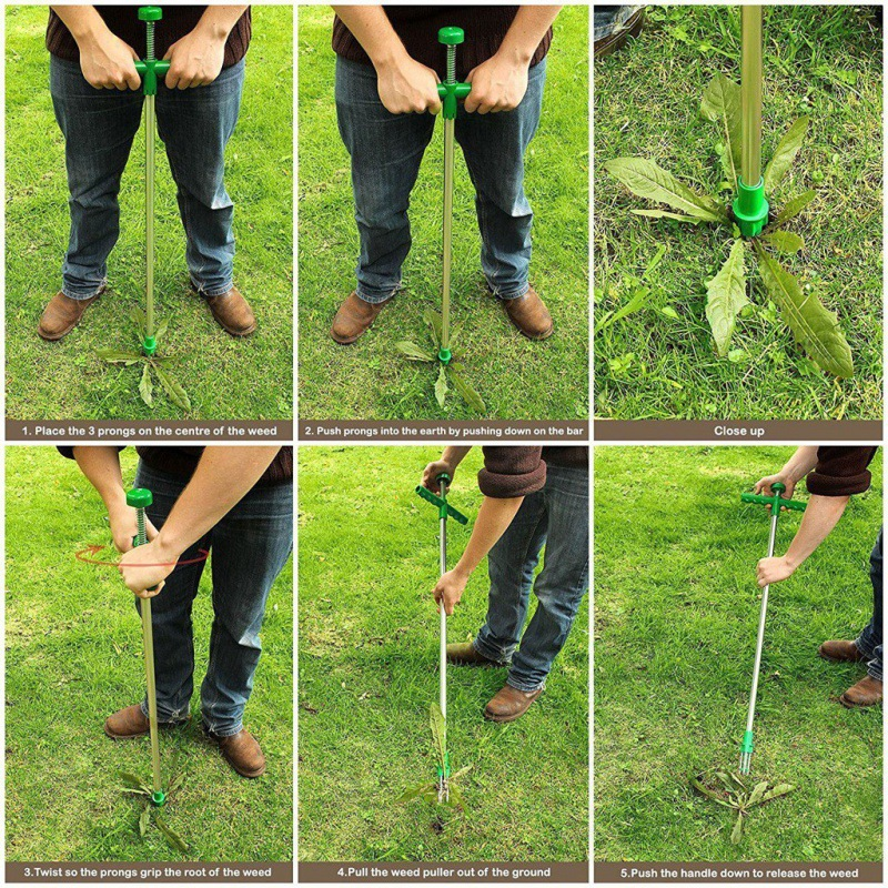 Standing Weed Puller - Long Weed Remover
