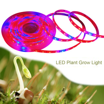 Phytolamp for plants 5050 LED Strip Waterproof Led Grow Light Full Spectrum Phyto Lamp Red Blue Lights for Greenhouse Hydroponic 5m led grow light strip full spectrum uv lamps for plants waterproof phyto lamp red bluetape for greenhouse grow tent hydroponic
