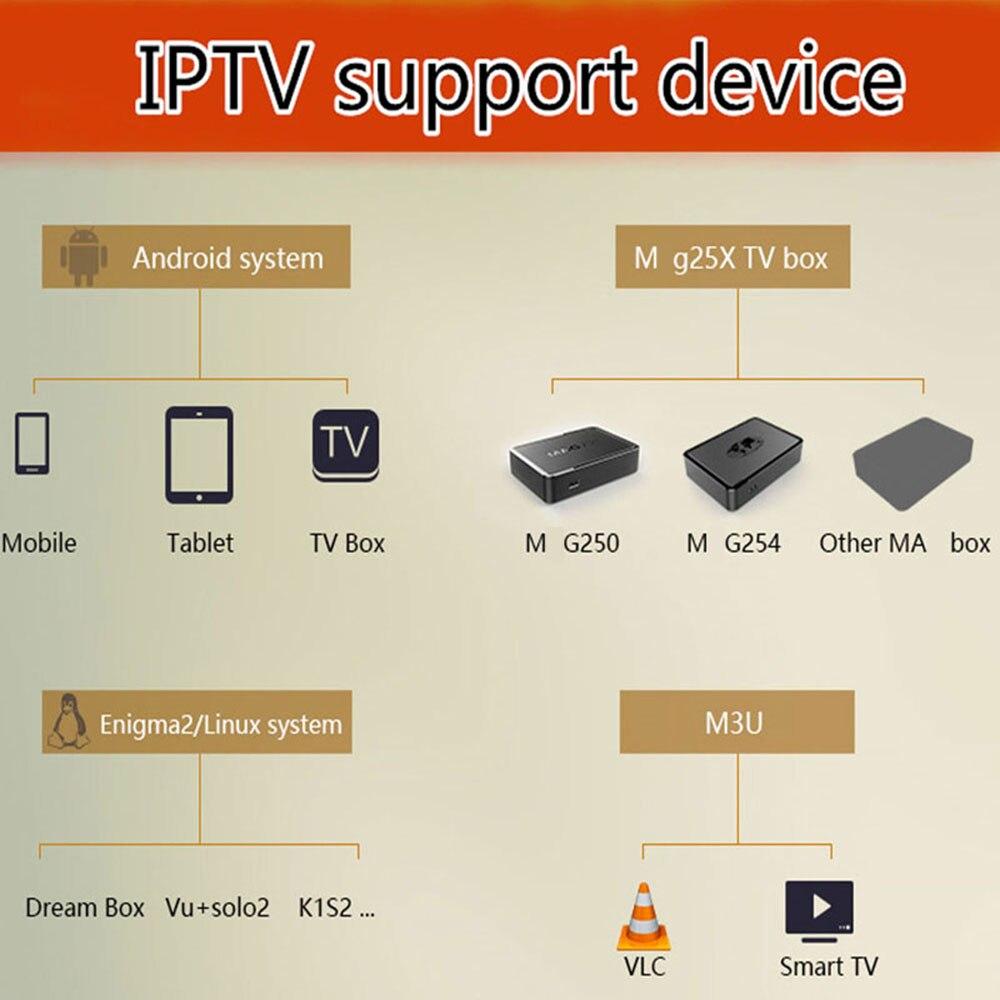 Französisch M3U IPTV abonnement für HD Welt Arabisch IPTV Dutch 9000 + Live/ Vod IPTV sport/xxx Unterstützung android m3u enigma2 TV H96