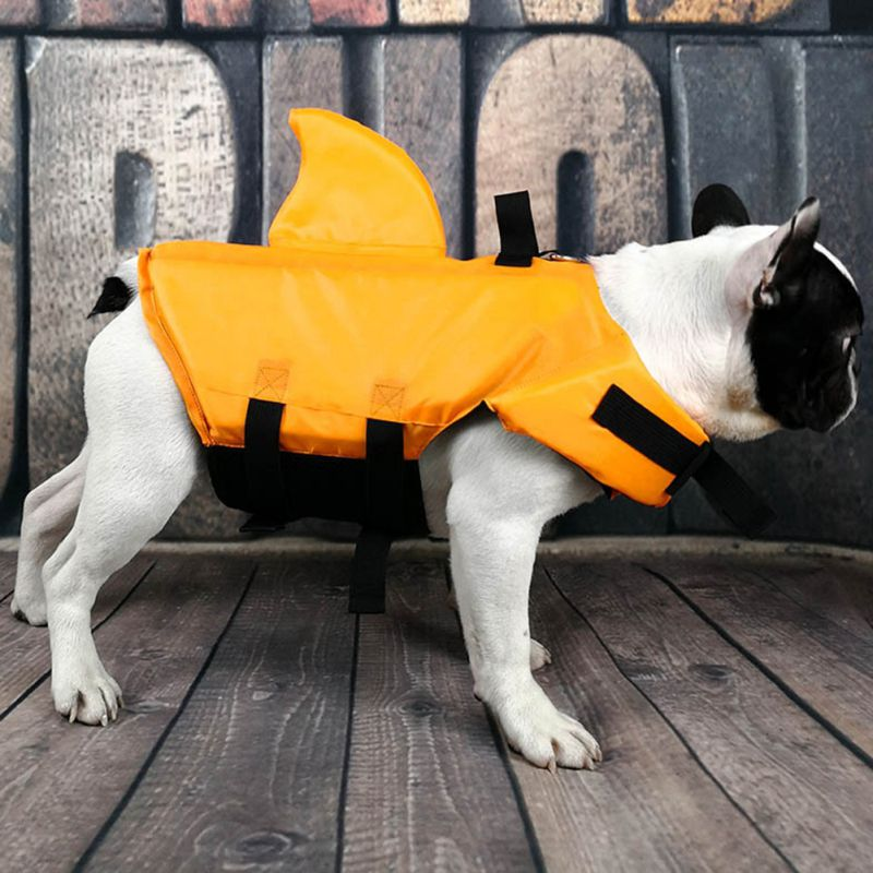 shark vest for dogs