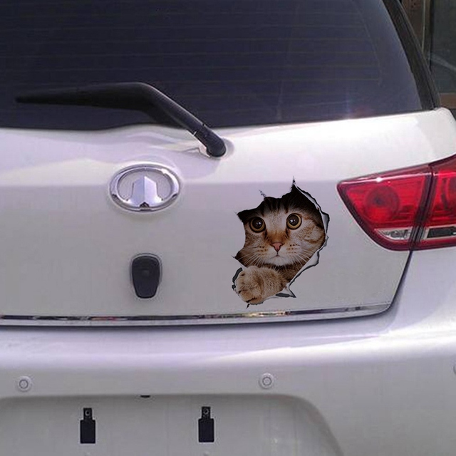 3d стерео аниме забавная творческая личность котенок кошка имитация фотография