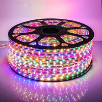 Led Strip RGB Changeable Color Rope 220V 230V 240V Plug Waterproof Tape 2835 Christmas Light String Holiday Party Ribbon Pink