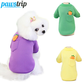 pawstrip Cute Small Dog Clothes Puppy Shirt Soft Warm Dog Sweatshirt Chihuahua Yorkie Dog Coat Pet Clothing For Dogs Cats S-2XL 1