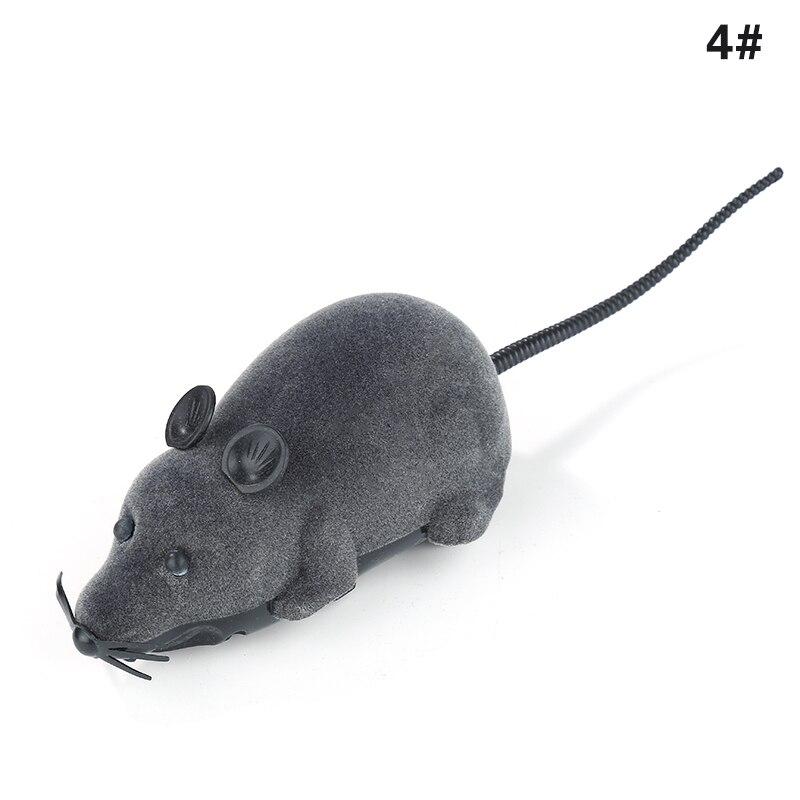 Gray black ears