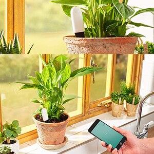 Image 5 - VegTrug Flora Monitor Digital Plants Grass Soil Water Tester Sensor Flower Care For Garden Flowers