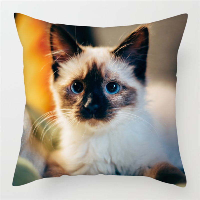 Fuwatacchi Cute Cat Pillow Cases Canadian Hairless Cushion Cover Pillow Cover for Sofa Home Chair Decoratives