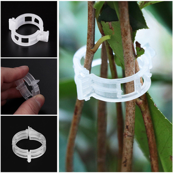 50/100pcs Reusable Plastic Plant Clips Supports Connects Protection Grafting Fixing Tool Gardening Supplies For Vegetable Tomato