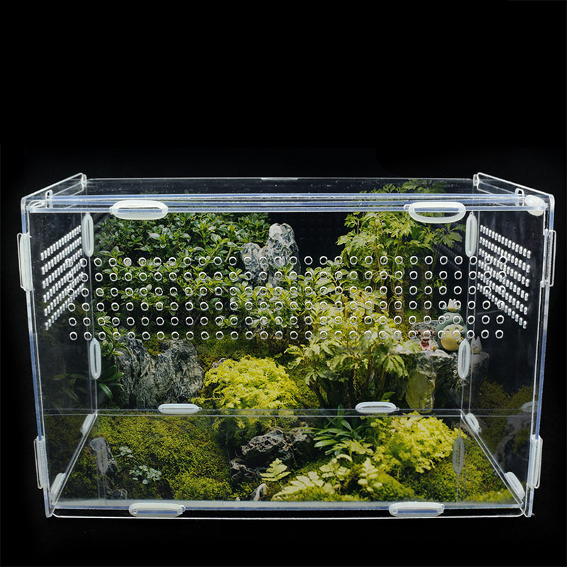 Transparent Acrylic Reptile Box For Spiders Tortoise Lizard Breeding Insect Box Vents Sliding Small Pet Terrarium Vivarium