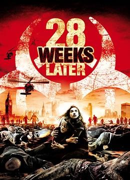 惊变28周