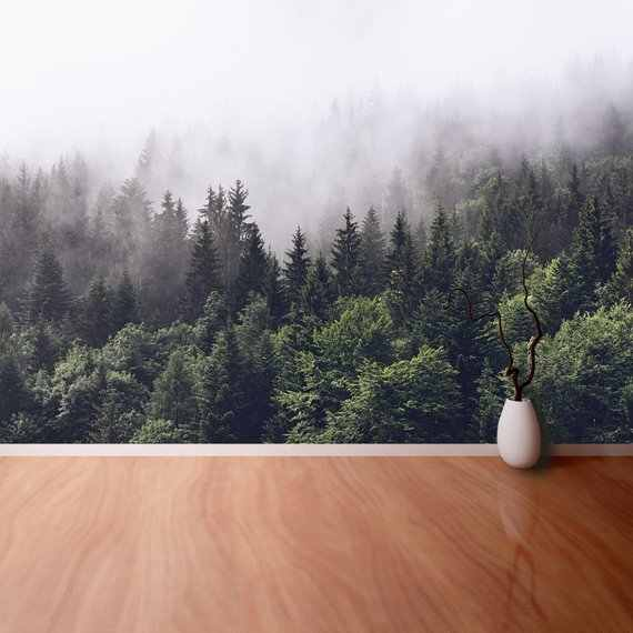 Mountain Foggy Forest Canvas Photo Wallpaper   Wallcovering Forested Mountain Slope In Low Lying Cloud with The Evergreen Custom
