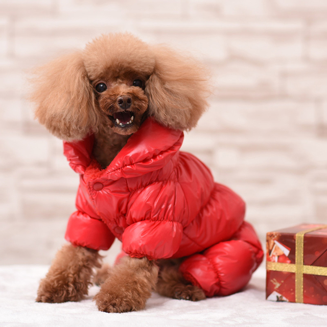 Dog Winter Metallic Coat  4