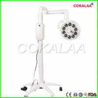 High quality dental Floor standing movable inspection lamp Surgical lights 10 LED medical cold light lamp