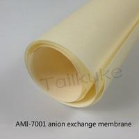 Membrana de troca de anion ami7001