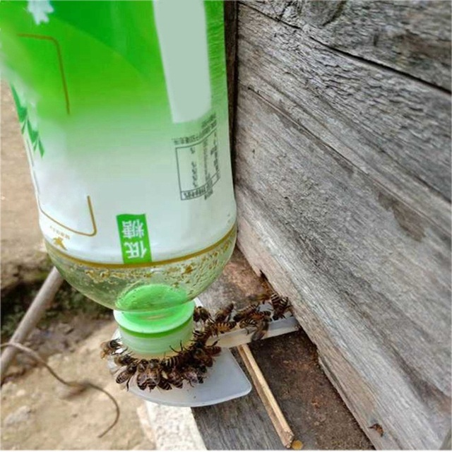 10pcs Honeybee Entrance Feeder Beekeeping Cap 3