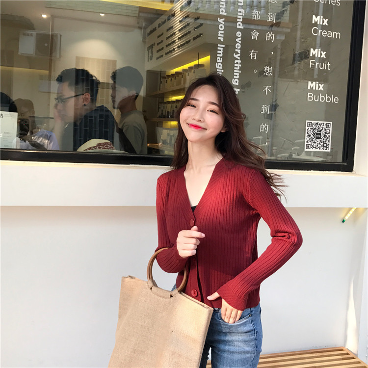 2020 Autumn Sexy  Style Women V-neck Solid Regular Plus Size Sweaters