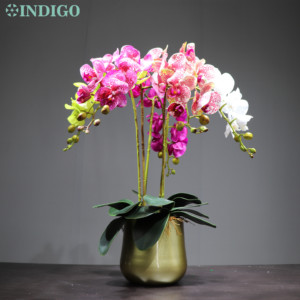 Image 5 - INDIGO  Phalaenopsis Butterfly White Orchid Real Touch Artificial Flower Office Wedding Moth Orchid Floral Party  Interior Trim