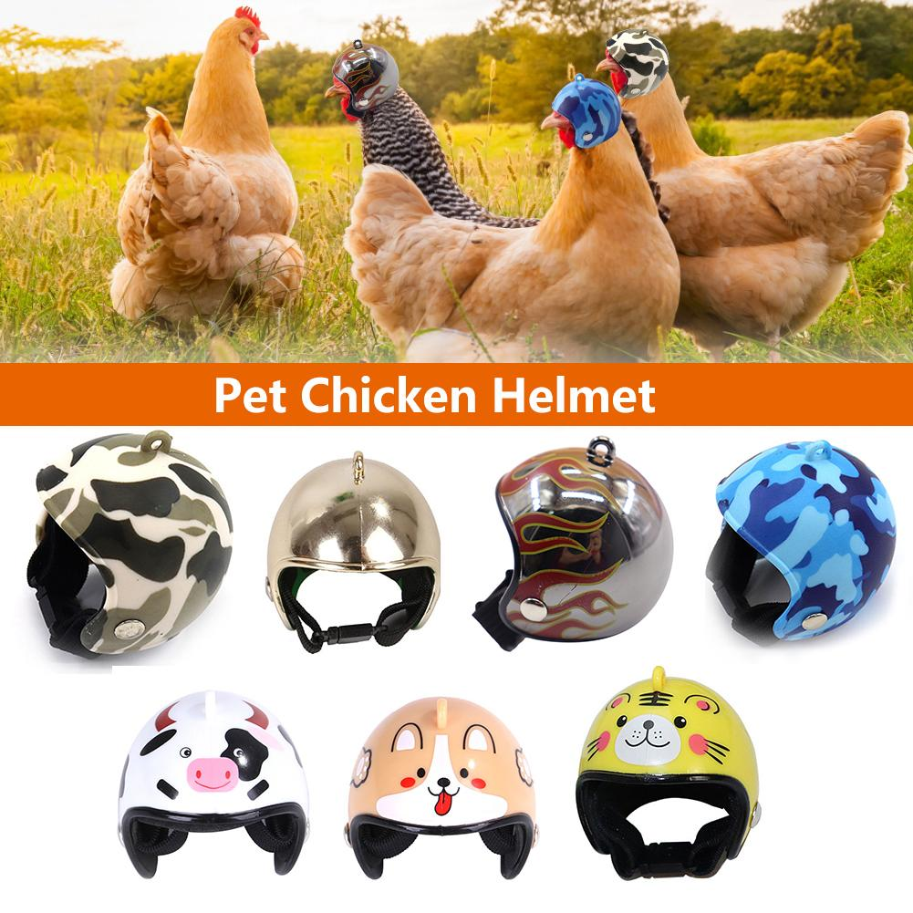 1 Pcs Pet Helmet Funny Chicken Helmet Head Protection Compact Chicken Hen Hard Hat Bird Head Helmet Pet Supplies