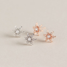 Fengxiaoling 2019 New Fashion 925 Sterling Silver Christmas Zircon Snowflake Stud Earrings Designer Earrings For Women Luxury