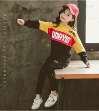 NEW girls Suit Brand Tracksuits Kids Clothing Set Hot Sell Fashion Spring Autumn Childrens Long Sleeve Sweatershirt+pant two pe