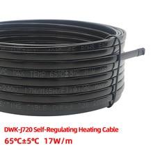 Tubo de agua Solar anticongelante de 220 V, cable de calefacción con protección, calentador eléctrico autorregulable, se puede conectar al enchufe de la UE