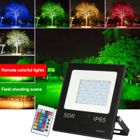 LED Floodlight 220V 240V 10W 30W 50W RGB 16 Colors Led Spotlight with Remote Control Outdoor Waterproof Reflector Garden Light|Floodlights|Lights & Lighting -