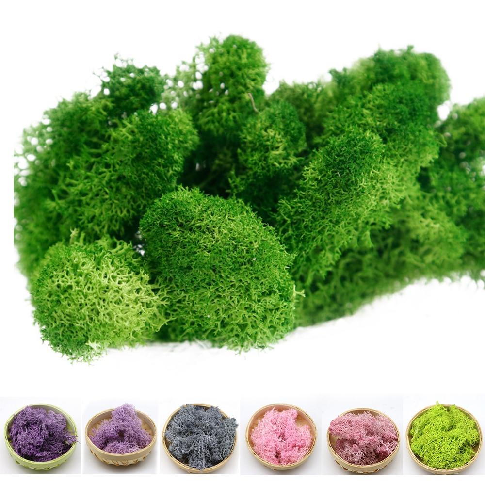 DIY Decorative Eternal Life Moss Immortal Fake Flower Moss Grass Home Decorative Wall Micro Landscape Artificial Plants Green