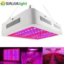 LED doniczkowe dla vegs