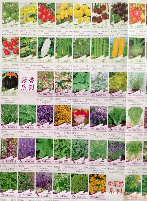 Vegetables Fruit Flower Plant Seeds Wholesale