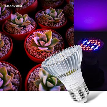 Led Hydroponic Plant Growth Lamp E27 Led Grow Tent Indoor Seedling Light 220V Full Spectrum Bulbs Flower Lighting 30W 50W 80W wpd full spectrum 50w plant growth light 30w 80w indoor nursery growth light