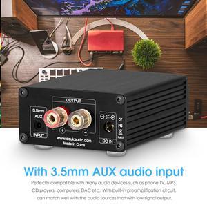 Image 5 - Douk Audio Hi Fi 100W Mini TPA3116D2 caisson de basses/amplificateur de puissance pleine fréquence amplificateur Audio numérique Mono canal
