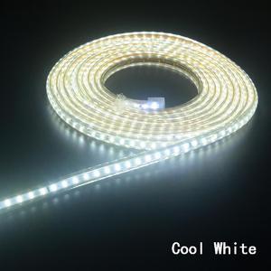 Super bright LED Strip 220V IP