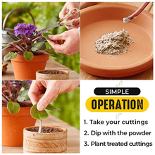 Fast Rooting Powder Rooting Hormone Powder Improve Flowering Cutting Survival Rate Plants Grow Cut Dip Powder Fertilizer Tool